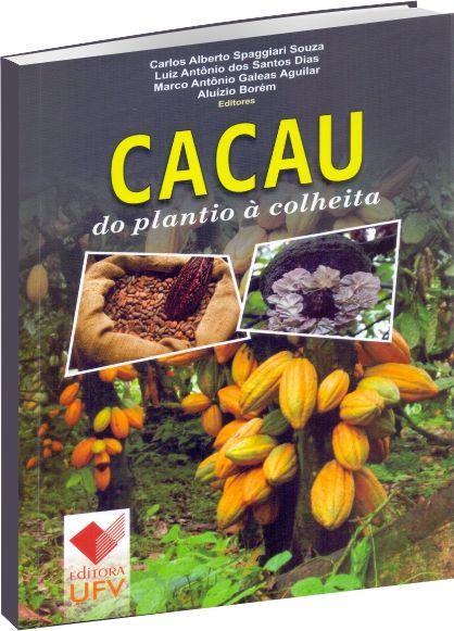 Cacau: do plantio à colheita