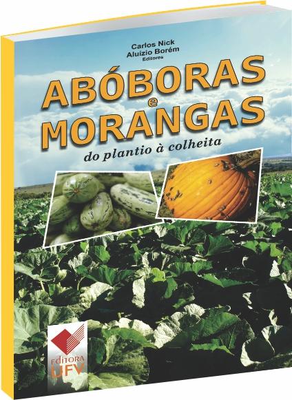 Abóboras e Morangas do plantio à colheita