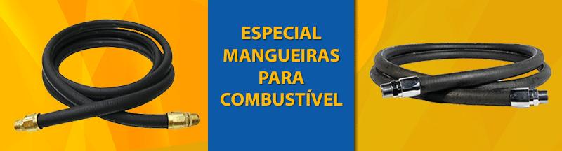 BANNER HOME MANGUEIRA