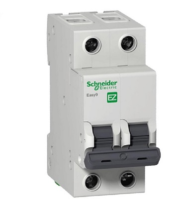 Disjuntor Bipolar 50a Curva C K32a Easy9 - Ez9f33250 - Schneider
