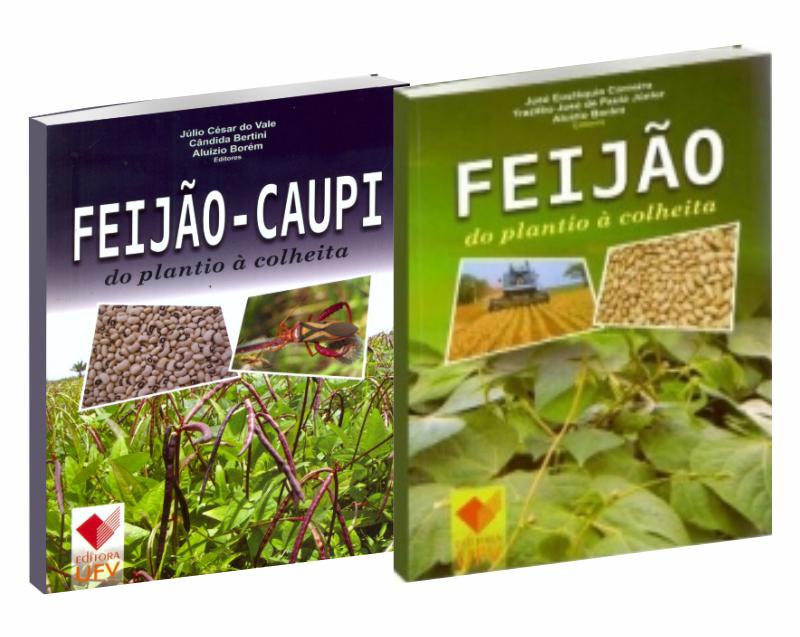 Feijão do Plantio à Colheita + Feijão-Caupi do Plantio à Colheita