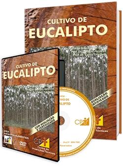 Curso Cultivo de Eucalipto