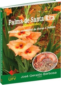 Palma-de-Santa-Rita
