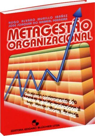 Metagestão Organizacional