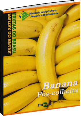 Banana Pós-colheita -  Frutas do Brasil