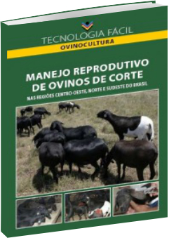 Manejo reprodutivo de ovinos de corte