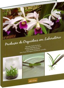 Produção de Orquídeas em Laboratório