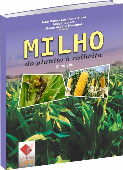 Milho do plantio à Colheita
