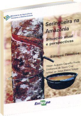 Seringueira na Amazônia