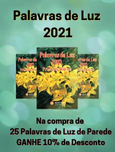 KIT 25 PALAVRAS DE LUZ 2021 - parede