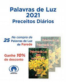kit com 25 -PALAVRAS DE LUZ 2021-PAREDE