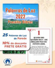 KIT 25 PALAVRAS DE LUZ 2022 (Preceitos Diários) - PAREDE
