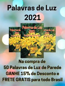 KIT COM 50 - PALAVRAS DE LUZ 2021-PAREDE