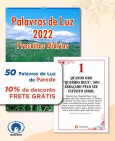 KIT 50 PALAVRAS DE LUZ 2022 (Preceitos Diários) -PAREDE