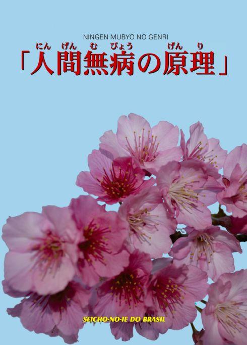 DVD - Ningen Mubyo no Genri (Palestra em japonês)