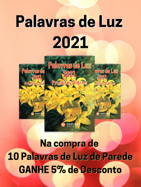 KIT COM 10 PALAVRAS DE LUZ 2021 - PAREDE