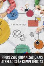 Curso Online Processos Organizacionais atrelados às Competências